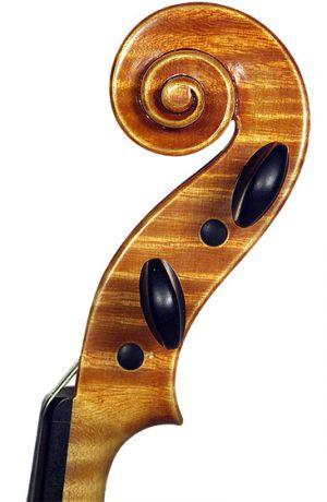 Stradivari_Kopf_rechts